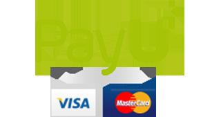 Visa i MasterCard